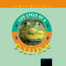 Life Cycles Bullfrog (Unabridged)